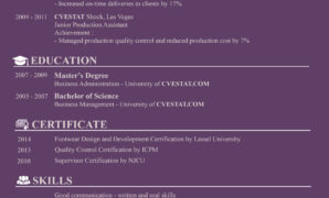 simple basic resume examples for job application