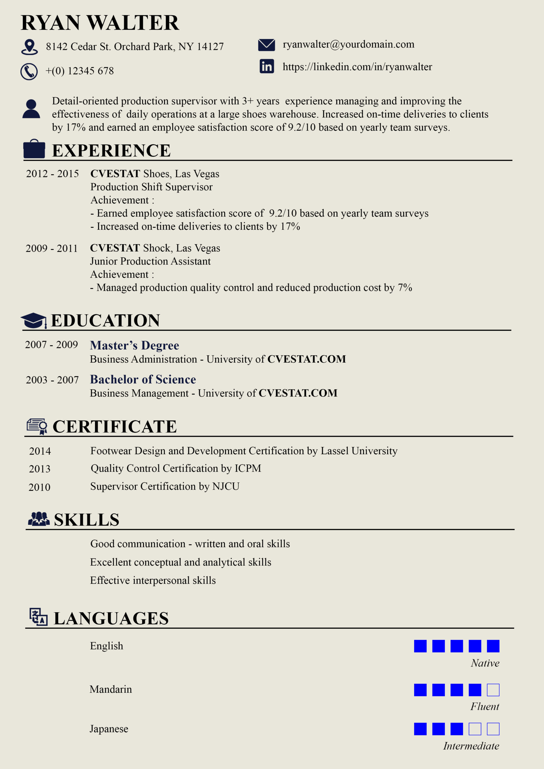 creative professional resume format and most creative design on pinterest