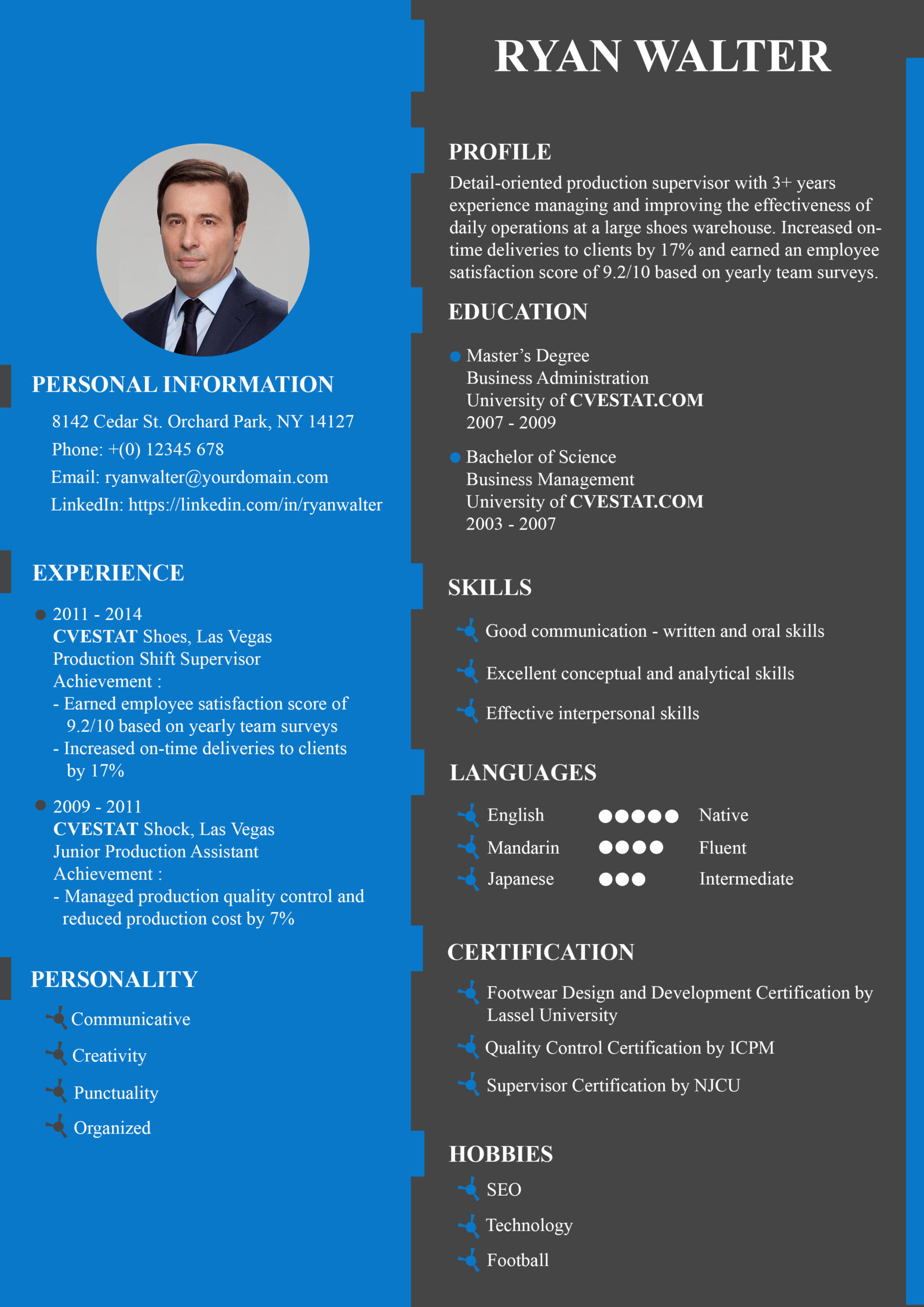 best resume summary example for first job docs
